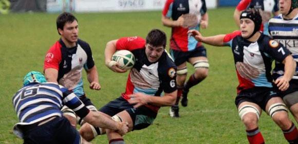 Belfast Harlequins Rugby Club